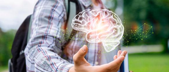 neuroeconomia ejemplos