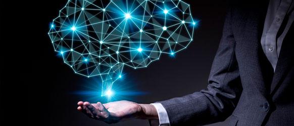 neurociencia y empresa